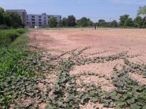 ภายในแปลงที่ดิน ขนาด 674 ตารางวา ถมที่ดินแล้ว ลำลูกกา คลอง 2