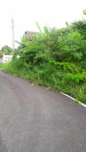 ถนนหน้าที่ดิน ถมที่ดินแล้ว ขนาด 110 ตารางวา ซอยกันตนา บางใหญ่