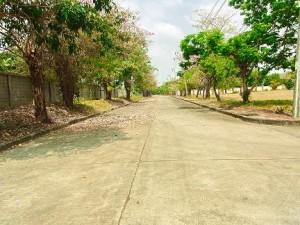 ถนนหน้าที่ดินบางนา