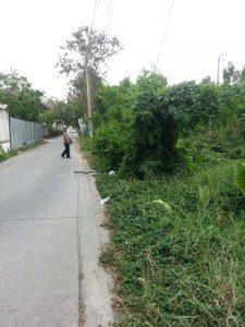 ถนนด้านหน้าที่ดิน ซอยรัชดาภิเษก66 ถมดินแล้ว ขนาดพื้นที่ 49 ตารางวา
