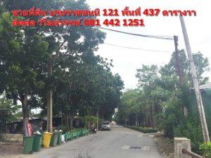 สภาพถนนในซอยหมู่บ้าน